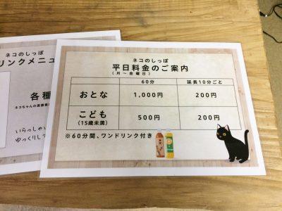 保護ネコカフェ ネコのしっぽ 富山県高岡市